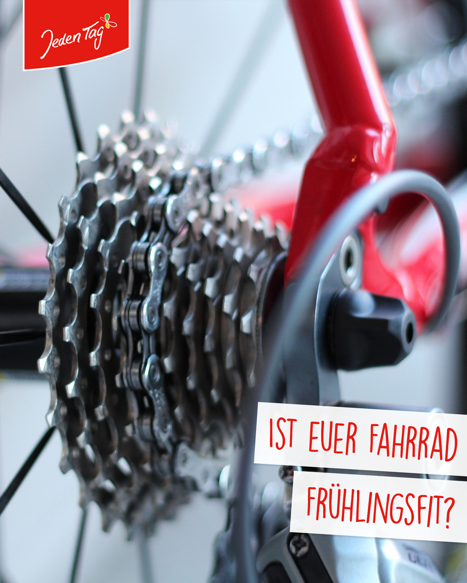 Jeden Tag Tipp: Fahrrad fahrfit
