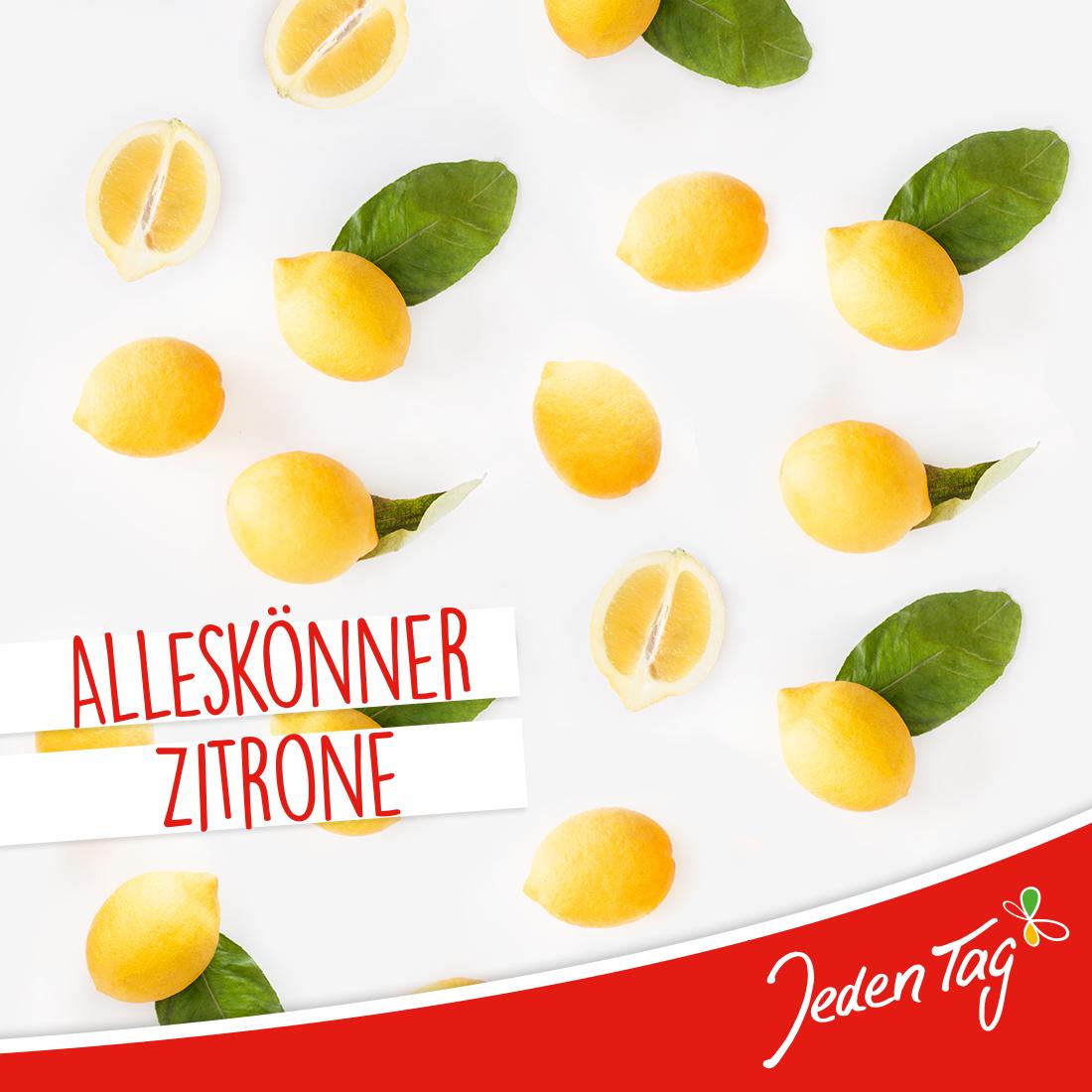 Alleskönner Zitrone