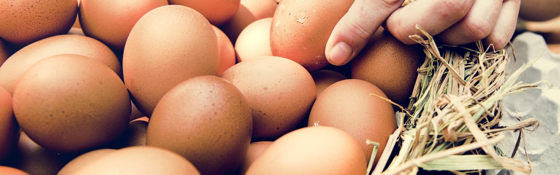 Jeden Tag - Eier