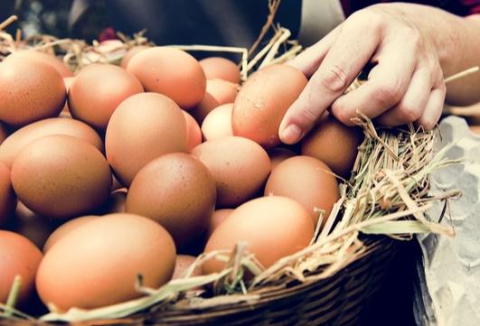 Jeden Tag Eier